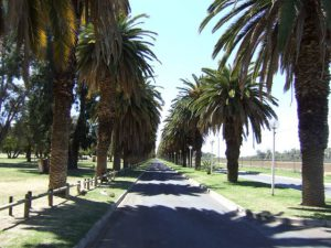 Upington Eiland Holiday Resort