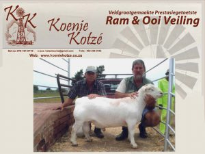 Upington Businesses | Koenie Kotze Swemkuil